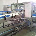 Plastic link conveyors packaging 12