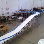 Plastic link conveyors robotic 5