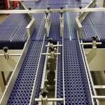 Plastic link conveyors packaging 10