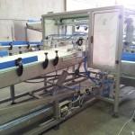 Plastic link conveyors robotic 9